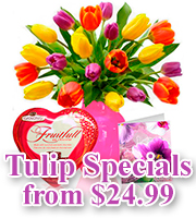 Mothers Day Tulips