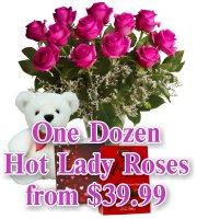 Hot Lady Roses
