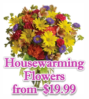Housewarming Flowers & Gifts