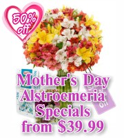Mothers Day Alstroemeria Specials