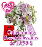 Collection Sweet Blossoms