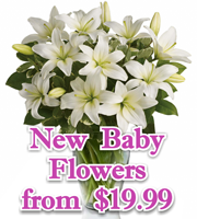 New Baby Flowers & Gifts