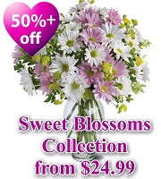 Sweet Blossoms Collection