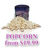 Gourmet Organic Popcorn