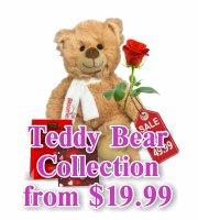 Teddy Bear Love Collection