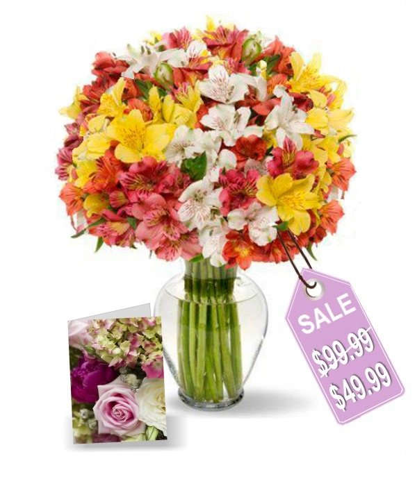 100 fleurs d'Alstroemeria I