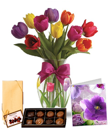 10 Tulip Combo
