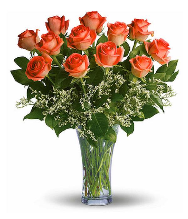 12  roses oranges a longue tige