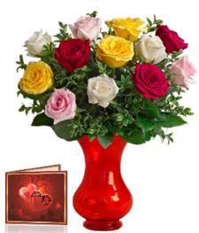 12 Mixed Long Stem Roses