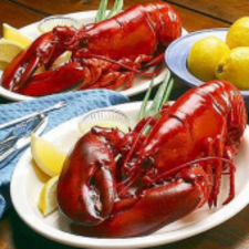 Two Lobsters (2)