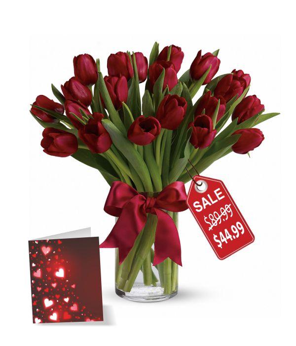 20 Valentine Tulips