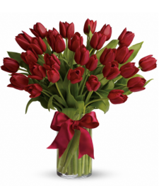 30 Red Tulips