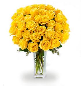 36 roses jaunes à longues tiges
