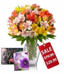 50 Blooms of Alstroemeria