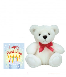 Birthday Card & Teddy