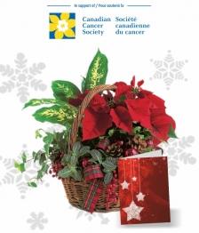 Holiday Hope Basket