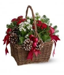 Panier de jardinière Joyeux Noel