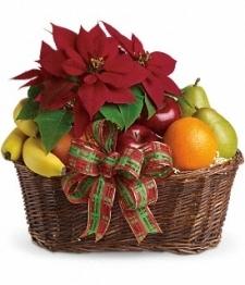 Poinsettia & Fruit Basket