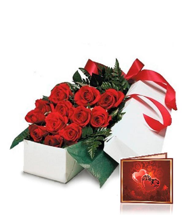 Deluxe Gift Packaging