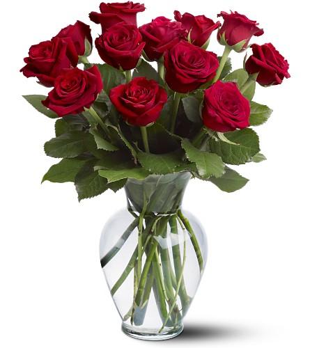 """Spécial roses pour """"Vendredi"""" II"""