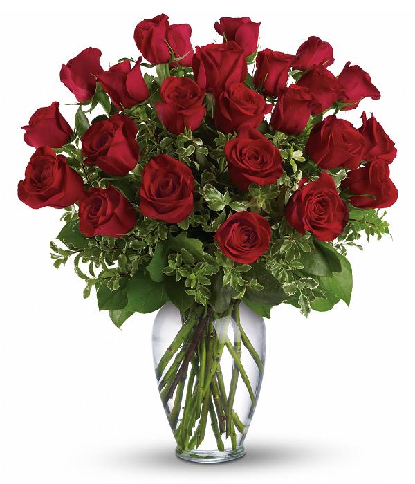 "Spécial roses pour ""Vendredi"" IV"