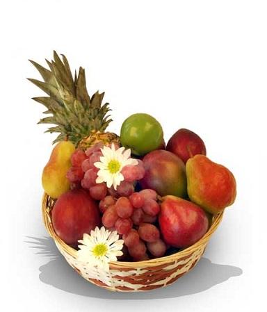 Récolte de fruits