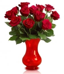 12 Boxed Red Roses