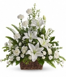 Peaceful White Lilies