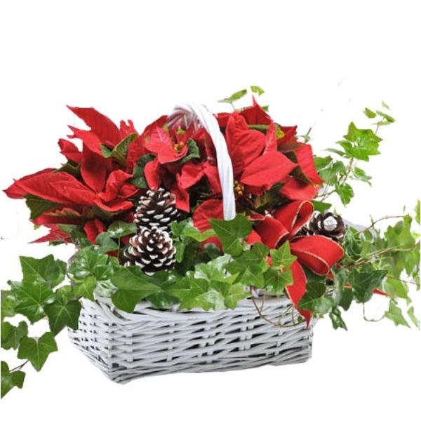 Happy Holidays Planter Basket
