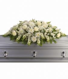 Arrangement de cercueil
