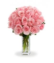 24 Long Stem Pink Roses