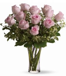 12 longues roses rosées
