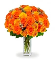 36 Long Stem Orange Roses