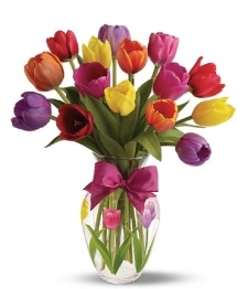15 Spring Tulips