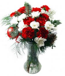 Bouquet d'oeillet d'hiver
