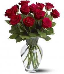 12 Long Stemmed Red Roses