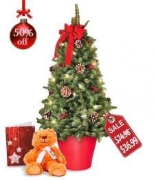 Mini Tree, Card and Teddy Bear