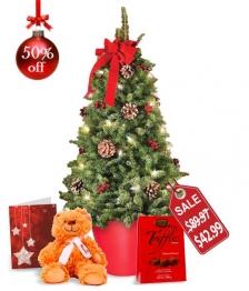 Mini Tree, Card, Chocolate and Teddy Bear