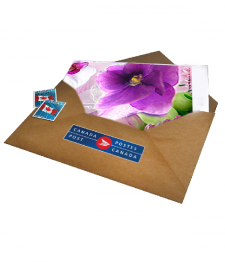 Thanksgiving Card with Postage