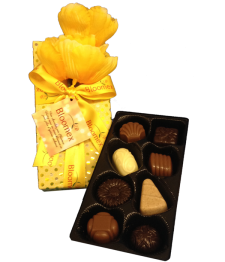 Large Belgian Chocolates