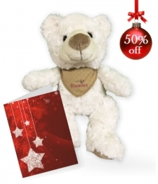Teddy Bear with Greeting Card