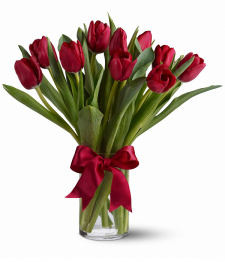 10 Red Tulips