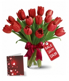 15 Tulipes rouges