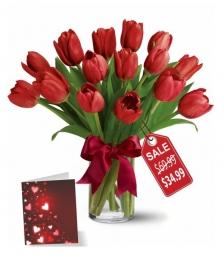 15 Valentine Tulips