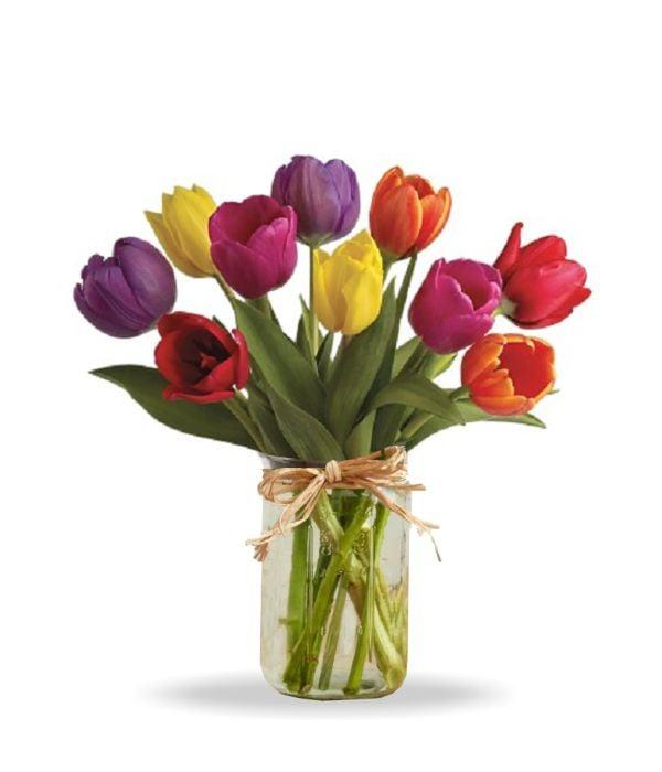 Spring Tulips in Mason Jar