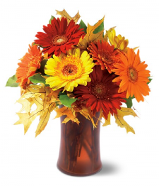 Autumn Gerberas
