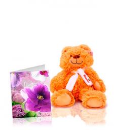 Free Teddy Bear & Card