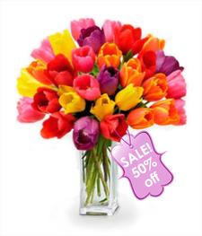 30 Spring Tulips