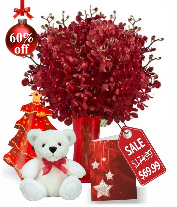 100 Blooms of Christmas Orchids Special