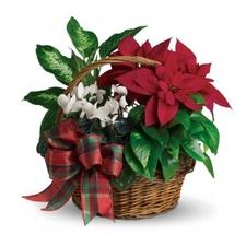 Holiday Poinsettia Basket